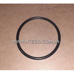 Уплотнительное кольцо патрубка впускного коллектора Mercedes Atego 0249970848. Оригинал