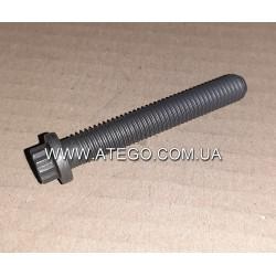 Болт крепления PLD секции Mercedes Atego 9069900001. Оригинал