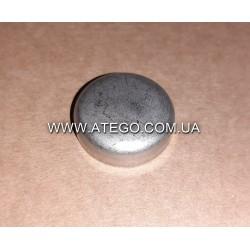 Заглушка на головке блока Mercedes Atego 4039970620 (25,2 мм). Оригинал