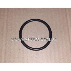Уплотнительное кольцо патрубка турбины Mercedes Atego 0289976348. Оригинал